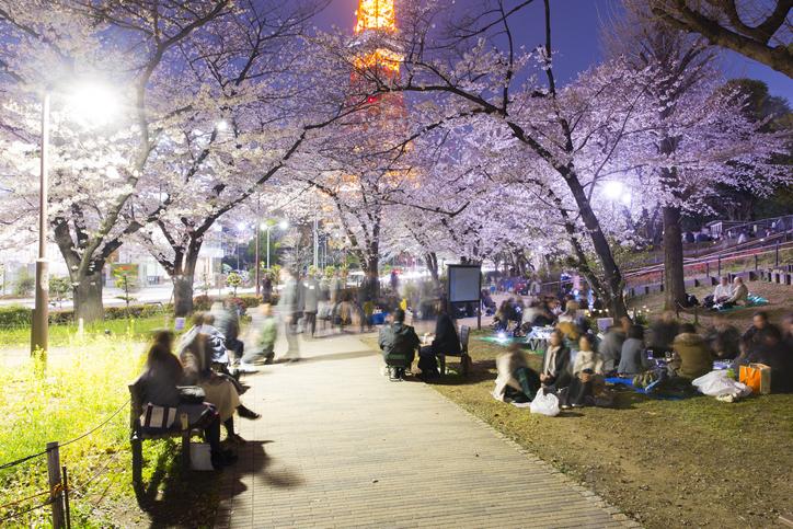 宮崎でおすすめの初デートスポット3選